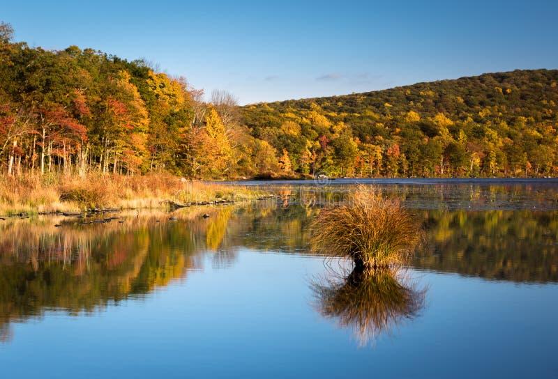 I colori del fogliame di caduta hanno riflesso nel lago mine d'argento immagini stock libere da diritti