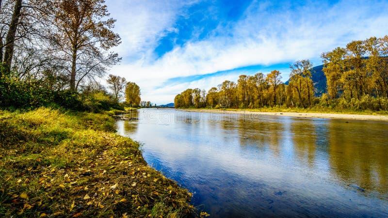 I colori di caduta intorno a Nicomen sprofondano, un ramo di Fraser River, poichè attraversa Fraser Valley fotografia stock
