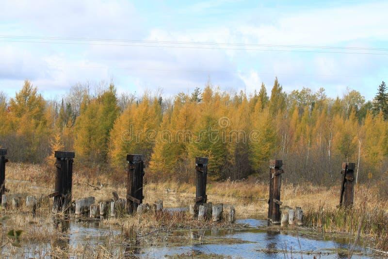 I colori di caduta sono riflessi in un fiume in Wisconsin fotografia stock