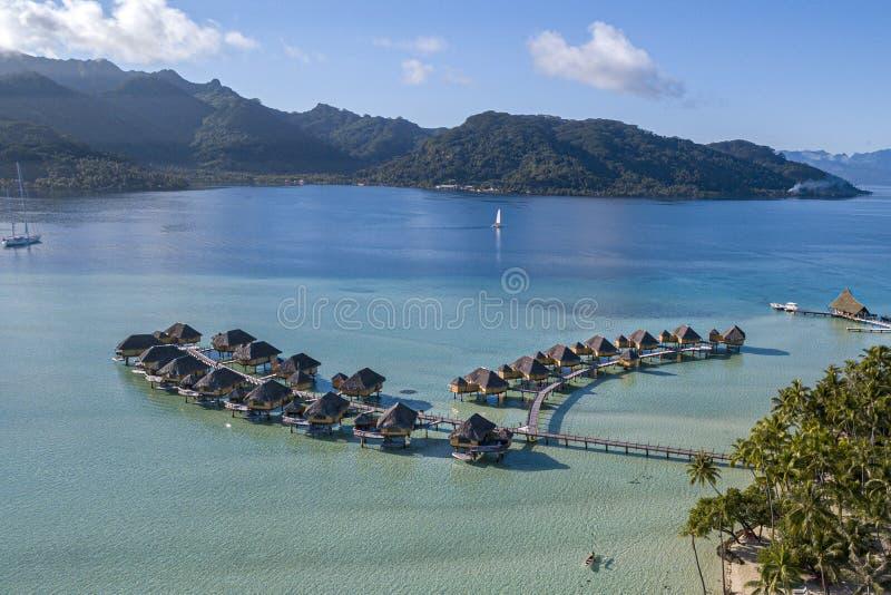 I coralli fanno il giardinaggio scogliere nella vista aerea di Polinesia francese con il fuco fotografia stock