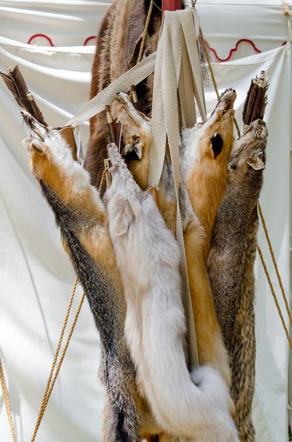 I cuoii di Fox appendono su uno scaffale ad un festival immagini stock