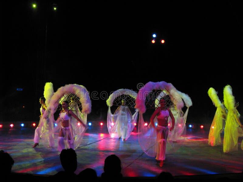 I danzatori immagini stock