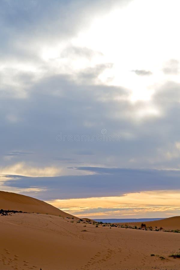 i den ökenMarocko sanden och dyn royaltyfri foto