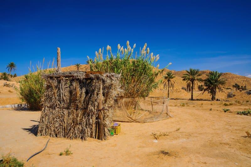 I den Sahara öknen Tunisien, Nordafrika royaltyfri foto