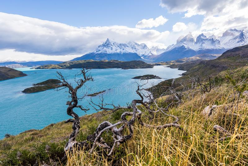 I den Torres del Paine nationalparken Patagonia, Chile, Lago del Pehoe royaltyfria foton
