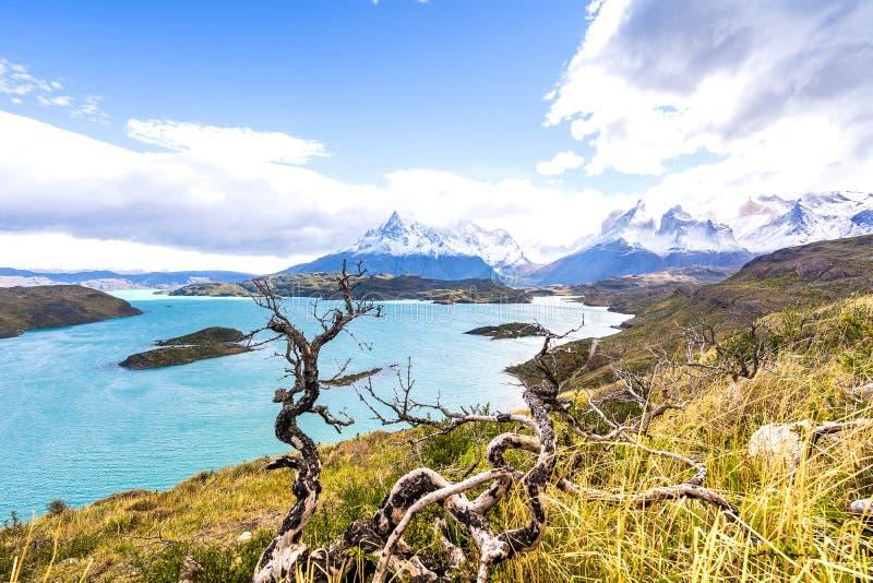 I den Torres del Paine nationalparken Patagonia, Chile, Lago del Pehoe royaltyfria bilder