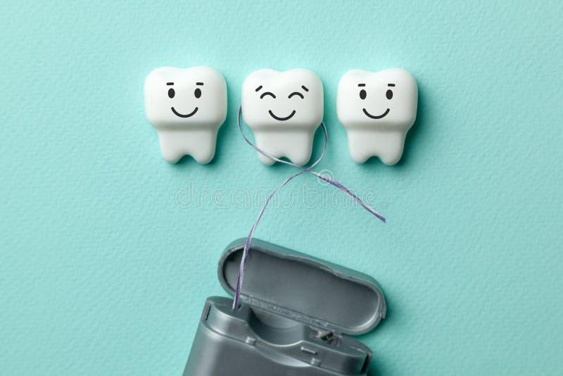 I denti bianchi sani stanno sorridendo sul fondo e sul filo di seta verdi della menta immagini stock