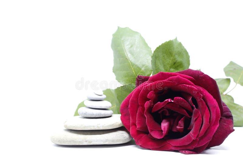 I dettagli delle pietre Rose e Spa immagini stock libere da diritti