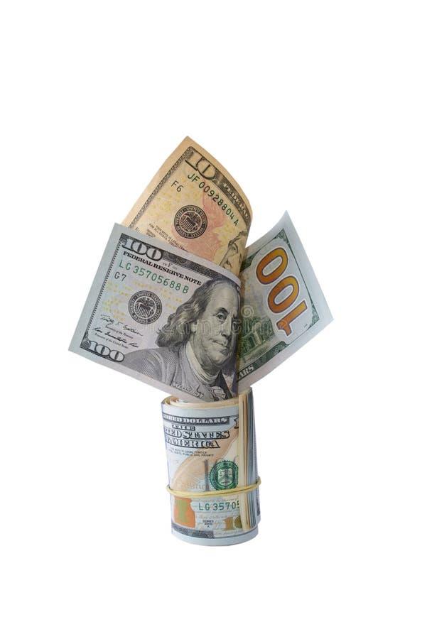 I dollari dell'albero hanno isolato il bianco immagine stock