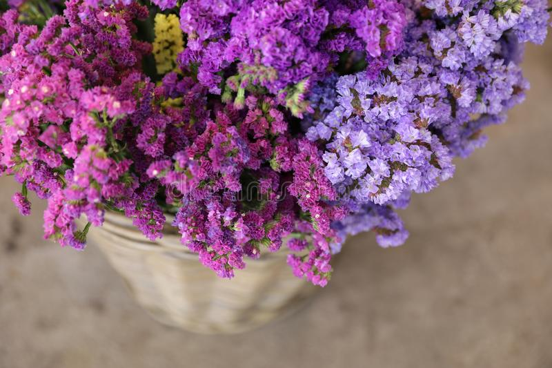 I en variation för vide- korg av limoniumsinuatum- eller staticesalem blommor i rosa färger shoppar lilan, violetta färger i träd royaltyfria foton