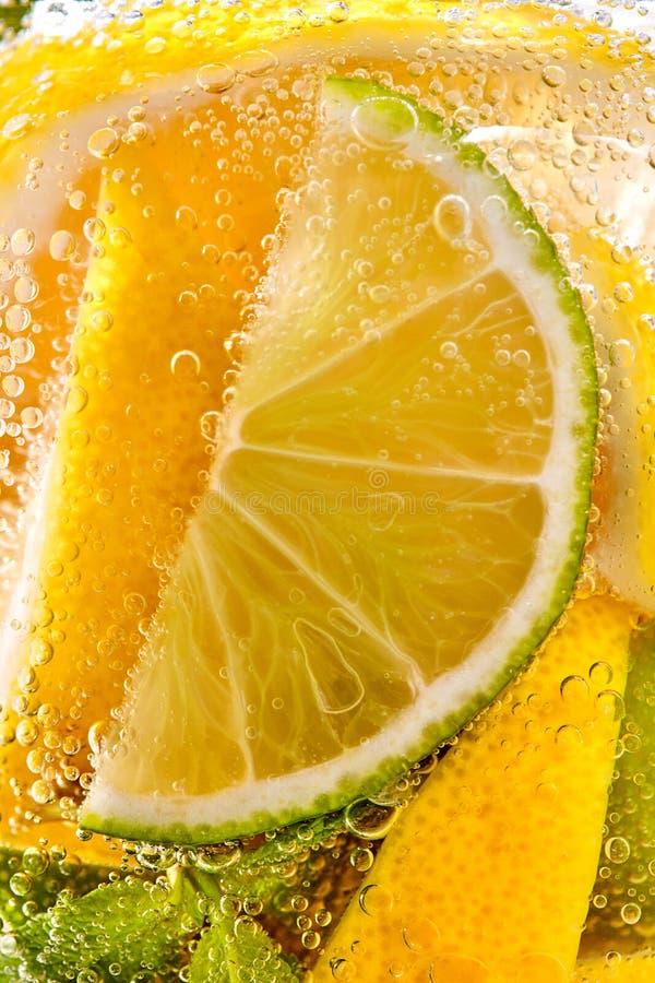 I ett klart exponeringsglasmintkaramellblad, skivor av limefrukt och citron med bubblor Makrofoto av sommardrinkmojitoen royaltyfria foton