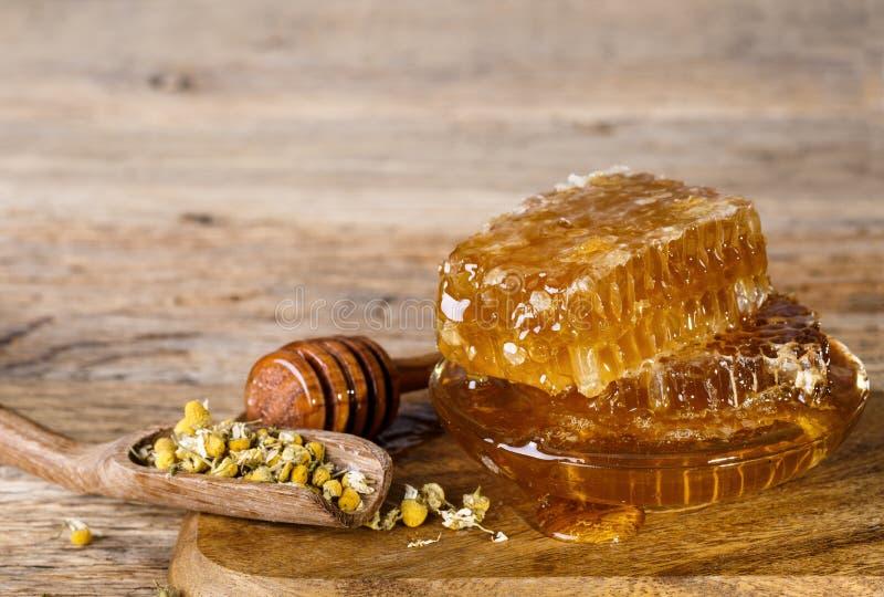 I favi ed il miele danno ed asciugato i fiori a cucchiaiate della camomilla immagine stock libera da diritti