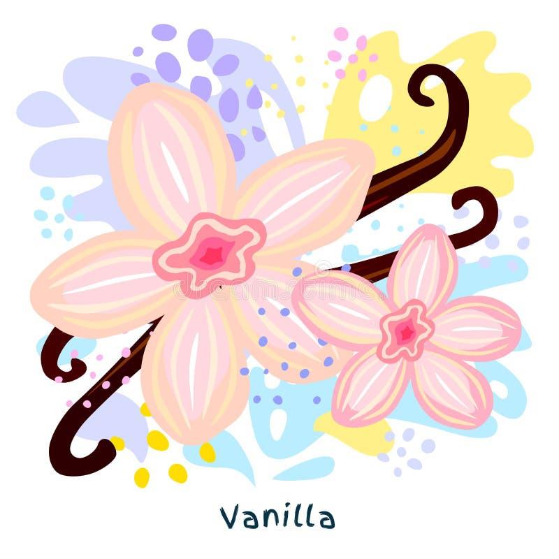I fiori che freschi la vaniglia attacca la spezia del condimento dell'alimento biologico della spruzzata del succo schizzano Dadi royalty illustrazione gratis