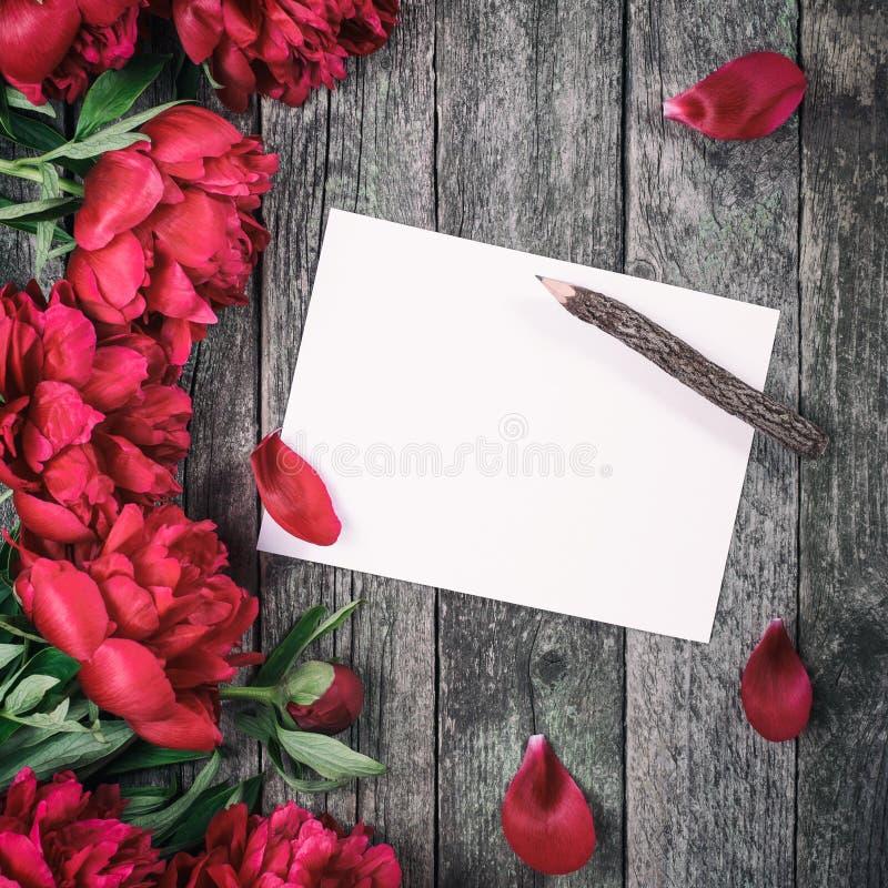 I fiori delle peonie e lo strato rosa di nascondono il fondo di legno scuro con spazio per testo immagini stock libere da diritti