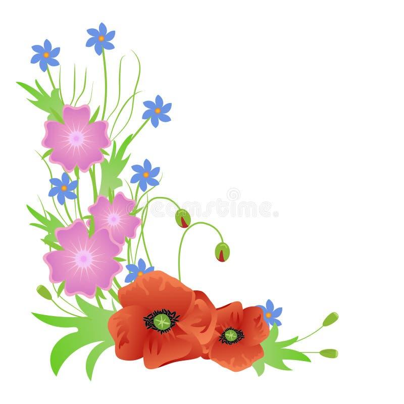 I fiori selvaggi accantonano il mazzo isolato su fondo bianco illustrazione vettoriale