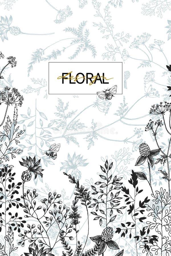 I fiori selvaggi sbocciano confine del ramo con il modello senza cuciture Illustrazione disegnata a mano botanica d'annata Primav illustrazione di stock