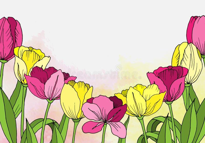 I fiori tirati Insegna o carta watercolor illustrazione vettoriale