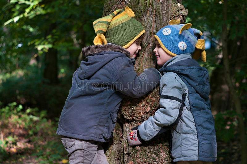 I fratelli gemelli abbracciano un albero immagine stock libera da diritti