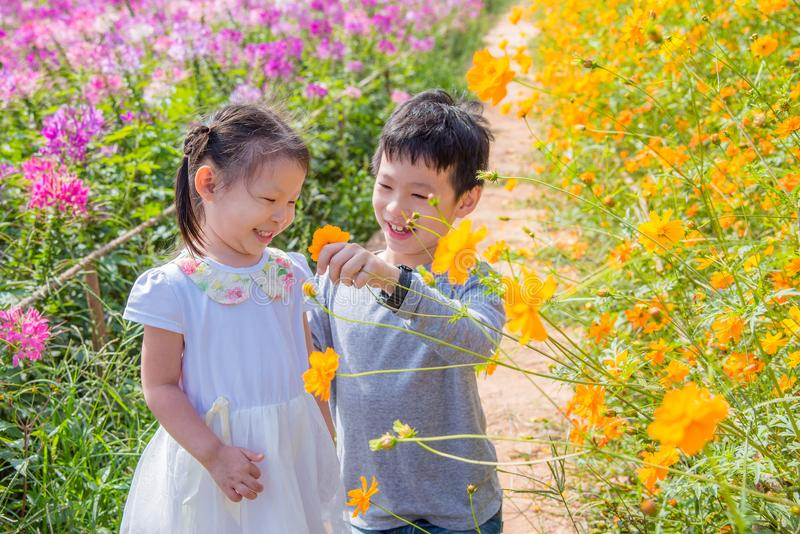 I fratelli germani godono di insieme in giardino floreale fotografia stock