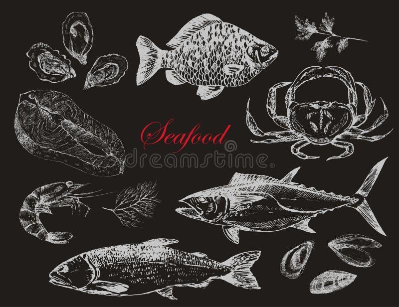 I frutti di mare disegnati a mano di vettore hanno messo - il gamberetto, il granchio, l'aragosta, il salmone, le ostriche, la co royalty illustrazione gratis
