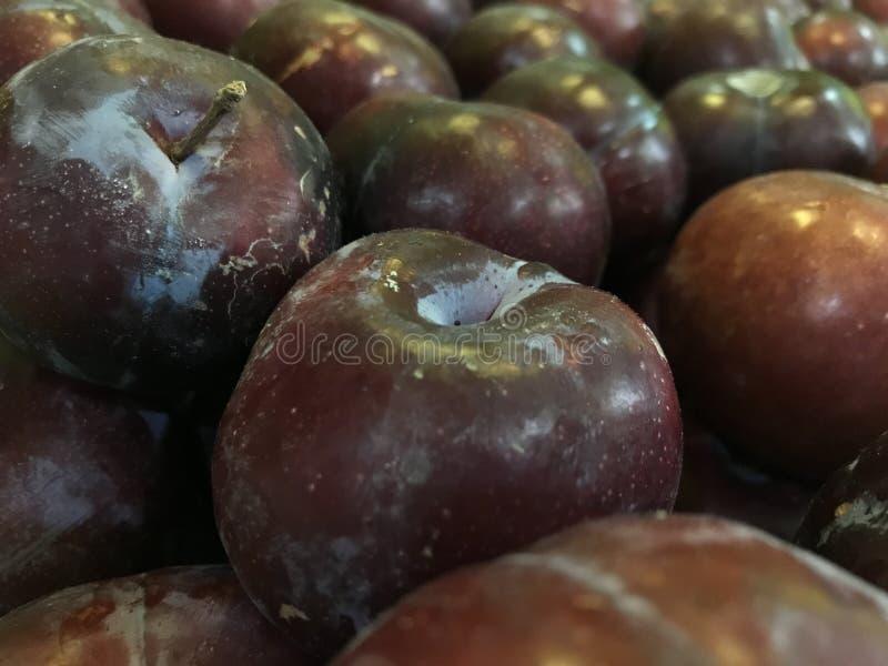 I frutti rossi della prugna, allineano sulla stalla immagini stock