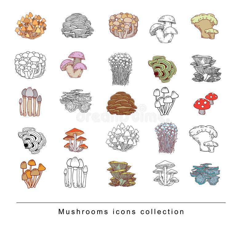 I funghi hanno messo le icone, illustrazione di vettore royalty illustrazione gratis