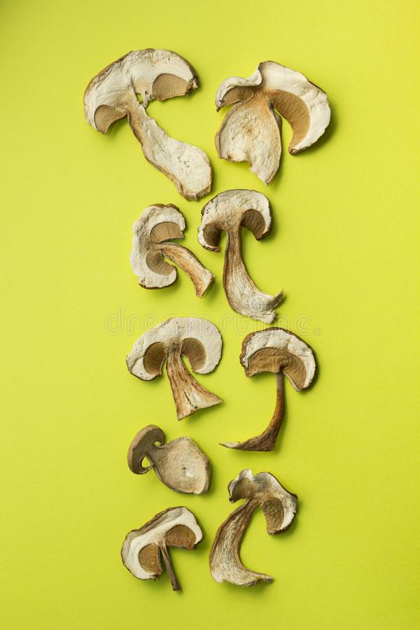 I funghi secchi sono su un fondo verde, verticalmente fotografia stock libera da diritti