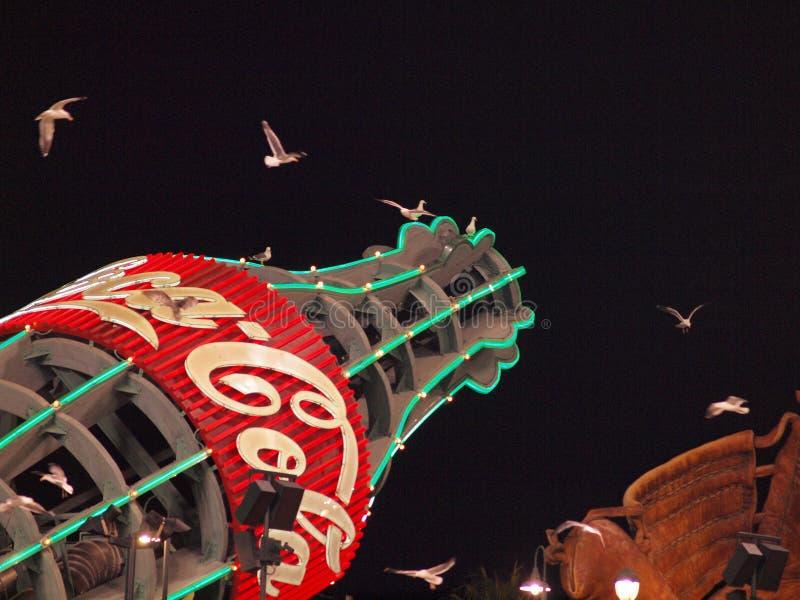 I gabbiani occidentali volano intorno alla bottiglia della coca-cola dei giganti fotografie stock
