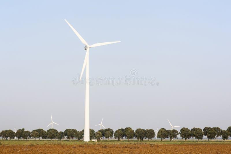 I generatori eolici e l'albero hanno allineato la strada nei Paesi Bassi fotografia stock libera da diritti