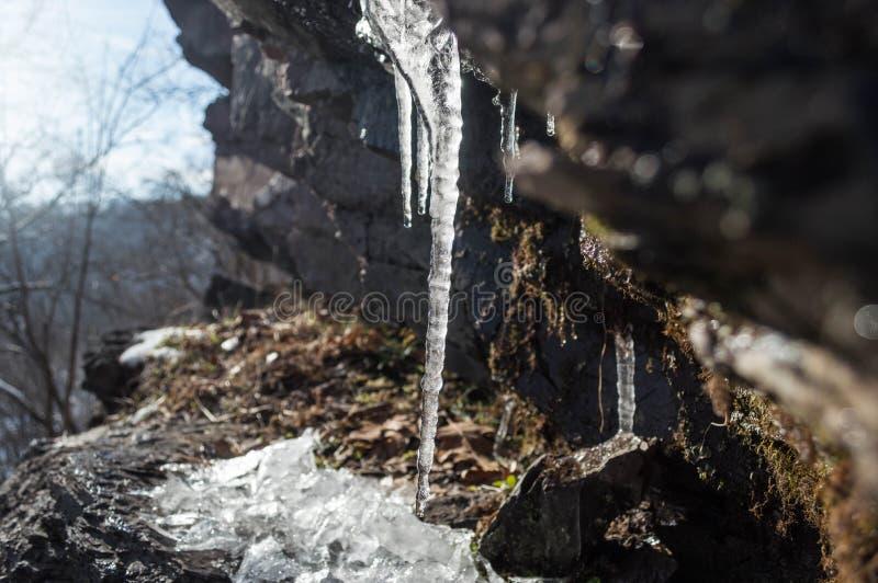 I ghiaccioli gocciolano dalla parete rocciosa mentre il sole picchia immagine stock