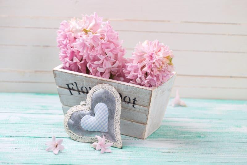 I giacinti rosa fiorisce in scatola di legno e nel cuore decorativo immagine stock libera da diritti