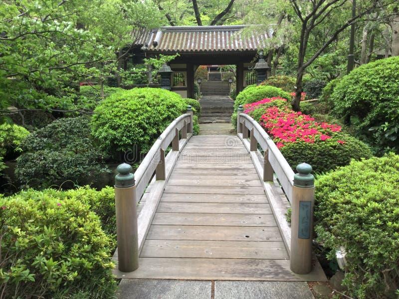 I giapponesi shrine e ponte di camminata a Tokyo, Giappone fotografie stock