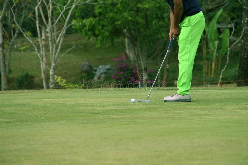 I giocatori di golf vaghi stanno picchiettando il golf nel campo da golf di sera in T immagine stock libera da diritti