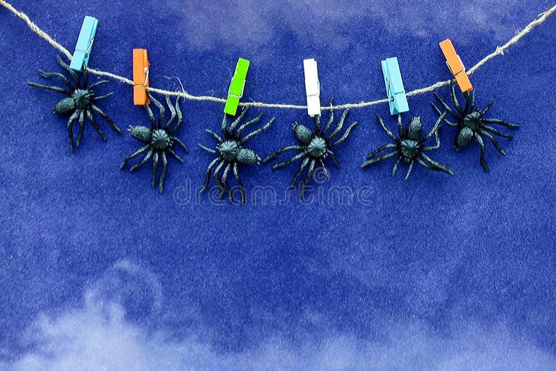 I giocattoli di gomma neri del ragno appendono sulle mollette da bucato variopinte sul fondo blu della carta del velluto con fumo immagine stock