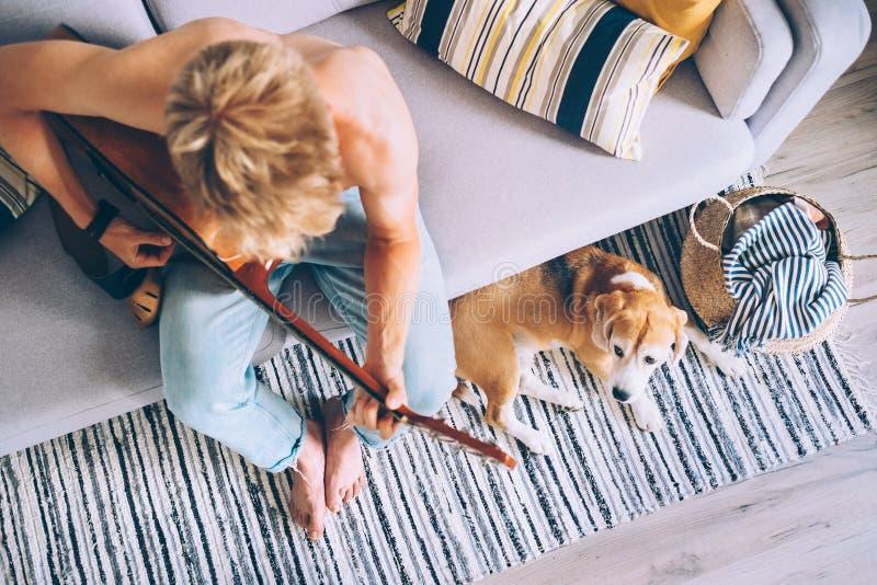 I giochi del giovane sulla chitarra che si siede sul cane del cane da lepre e del sofà ascoltano fotografie stock libere da diritti