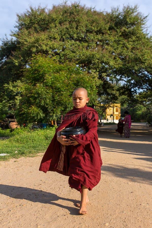 I giovani principianti buddisti camminano per raccogliere le elemosine e le offerti sulle vie di Bagan, Myanmar immagini stock libere da diritti