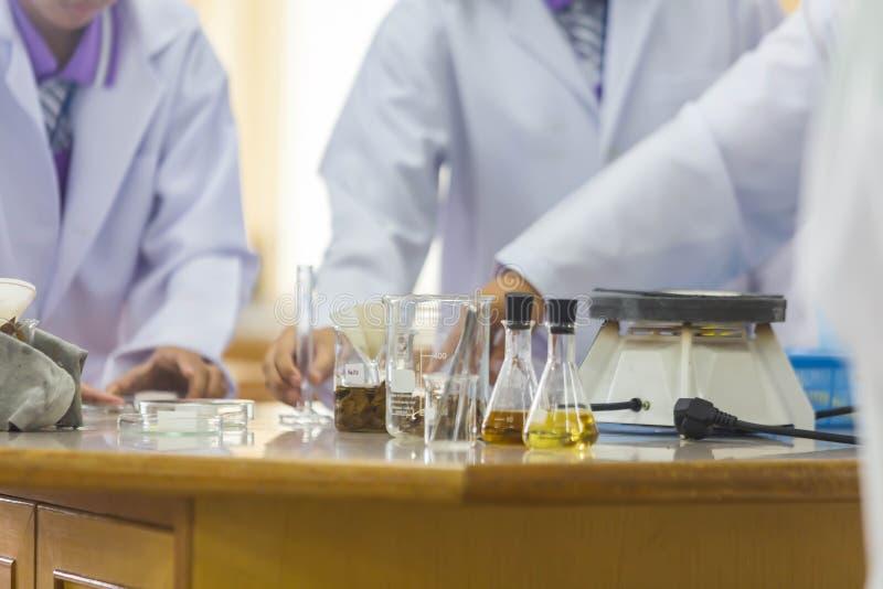 I giovani scienziati stanno facendo gli esperimenti nei laboratori di scienza fotografie stock libere da diritti