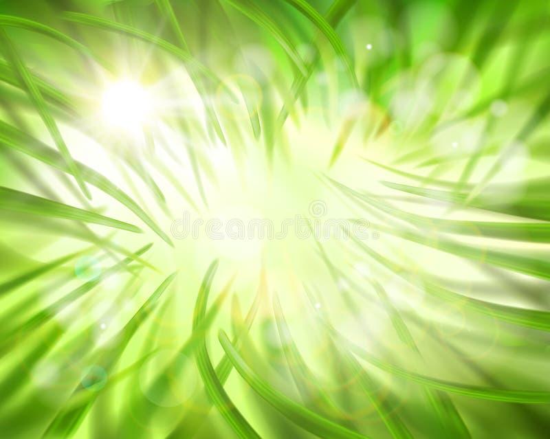 I gräset också vektor för coreldrawillustration stock illustrationer