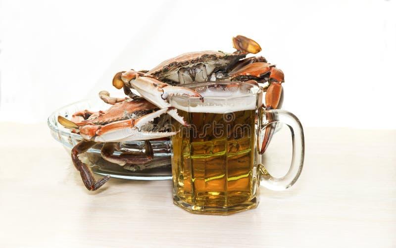 I granchi e la birra immagini stock