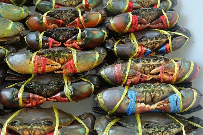 I granchi freschi sono legati e fila da vendere al mercato del locale dei frutti di mare immagini stock