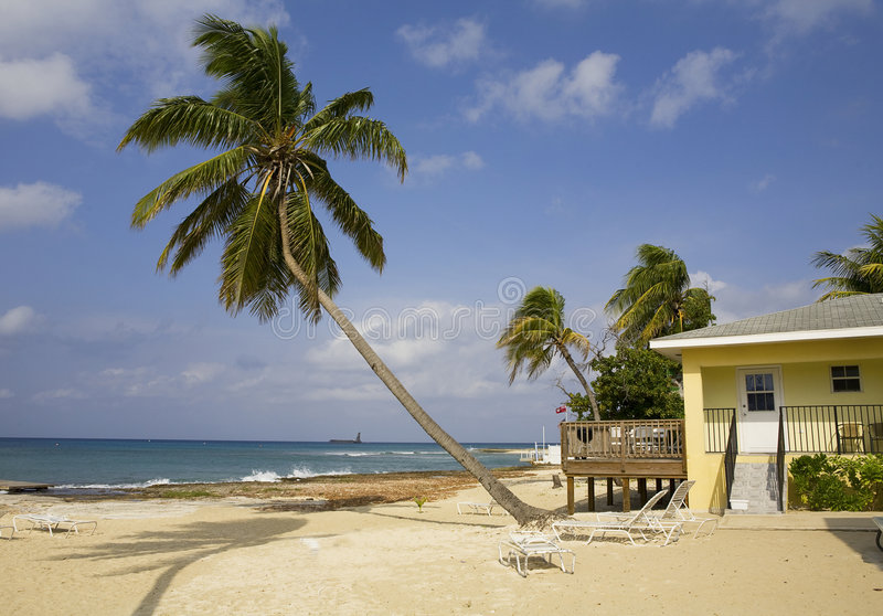 i grandi Cayman Islands fotografia stock libera da diritti
