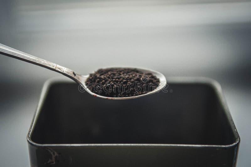 I granelli asciugano il tè nero fotografia stock libera da diritti