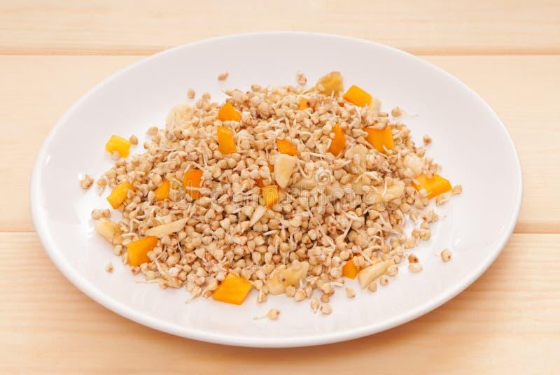 I grani germinati, i germogli dei semi, hanno germogliato il grano saraceno con il divieto immagine stock