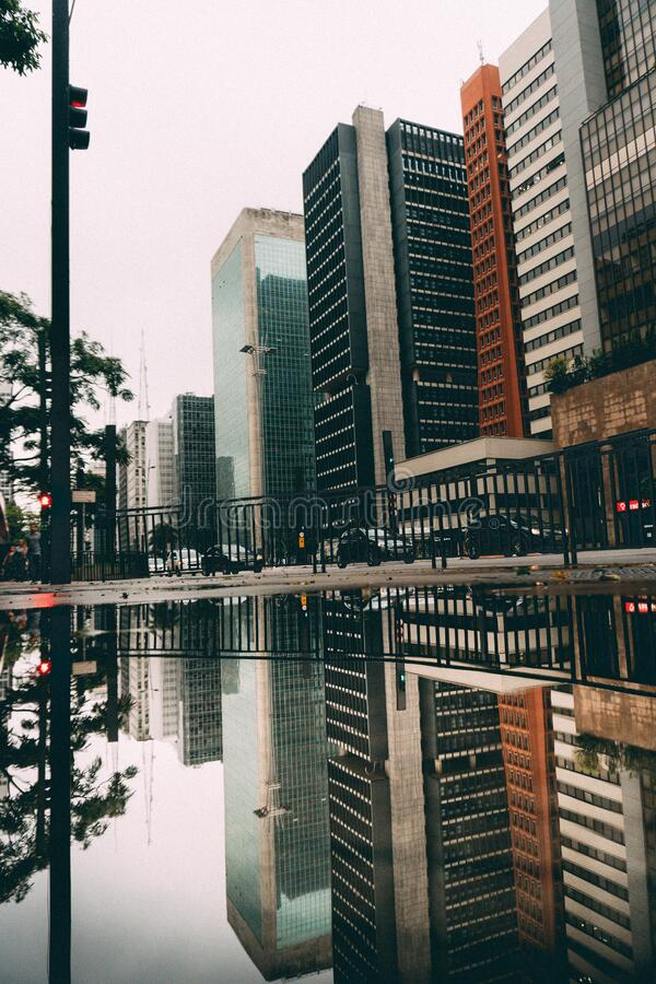 I grattacieli hanno riflesso in lago immagini stock libere da diritti