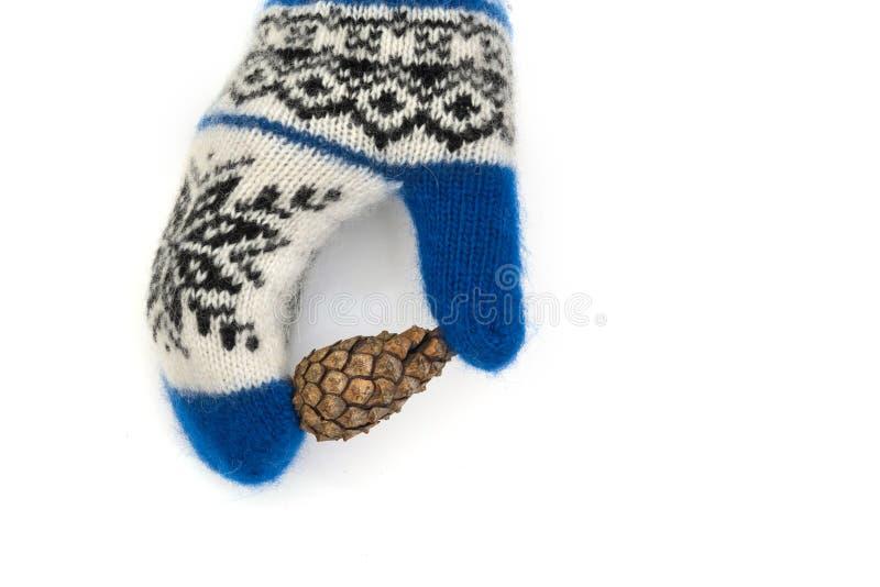 I guanti di Natale sono isolati su un fondo bianco fotografia stock libera da diritti