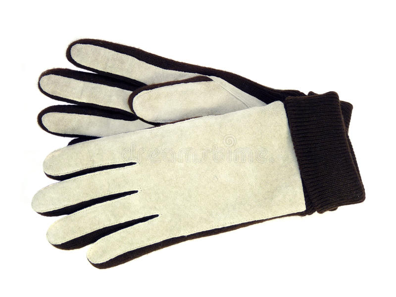 I guanti di pelle scamosciata delle donne alla moda hanno isolato immagine stock libera da diritti