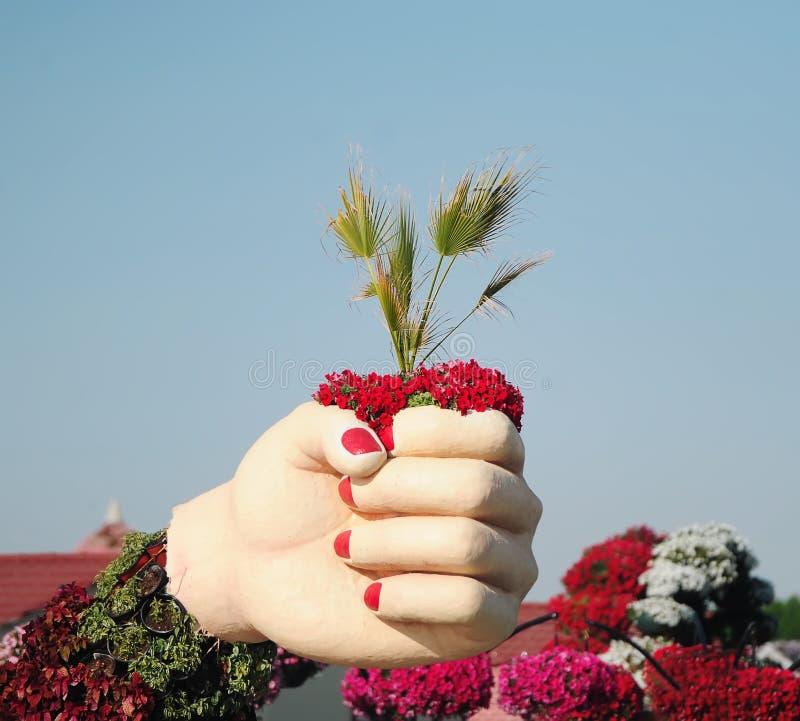 I hand finns det palmblad Dubai mirakelträdgård royaltyfri fotografi