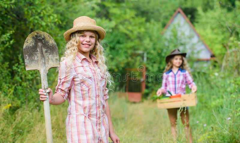 I have the best job in the world. summer farm. child hold gardening tools. small girl farmer with shovel in village. Happy farming. spring country side royalty free stock photography
