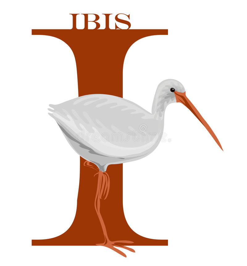 I (Ibis) royalty illustrazione gratis