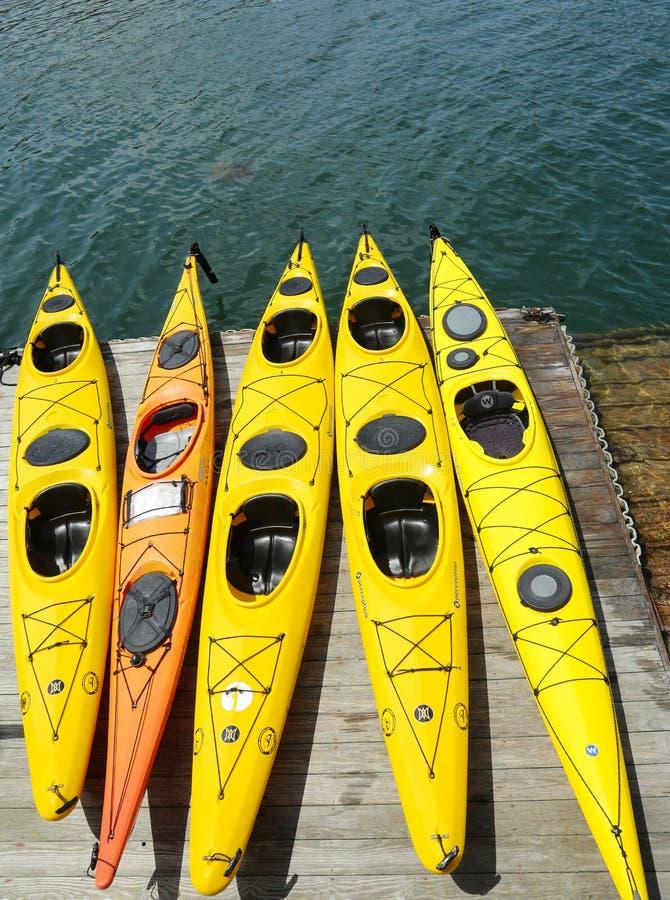 I kajak del mare pronti per i turisti in Antivari Harbor, Maine fotografie stock